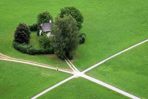 Ein Bild, das Gras, grün, Feld, grasbedeckt enthält.  Automatisch generierte Beschreibung